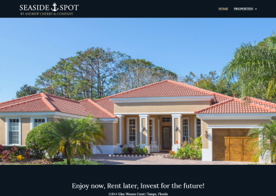 Real Estate Florida Andrew Cherry and Company Seaside Spot Clearwater Beach Florida Website Design Online Marketing SEO Website Build Software Development